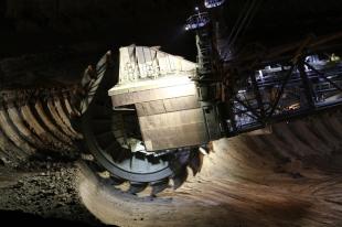 brown coal Ronald de Roij 17